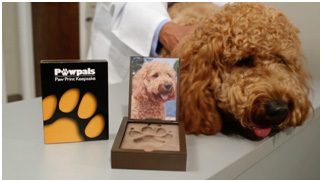 What Customers are Saying About Pawpals® Paw Print Mold